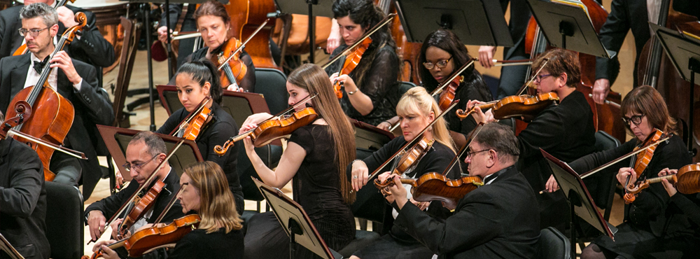 photo of Adelphi Symphony Orchestra