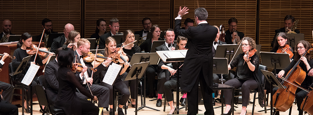 Image of Chamber Orchestra of New York performing